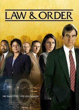 法律与秩序 第十季海报