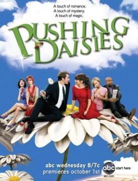 灵指神探 第二季 Pushing Daisies Season 2海报