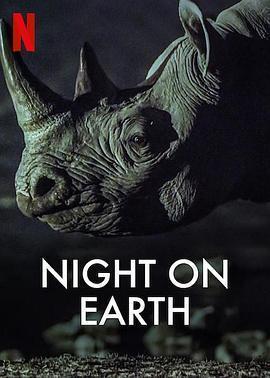地球的夜晚海报