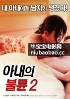 妻子的通奸2海报