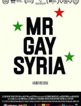 叙利亚同志先生海报