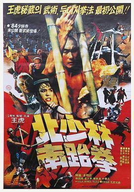 北少林南跆拳海报
