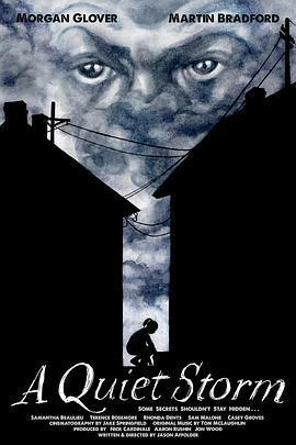 寂靜風暴海报