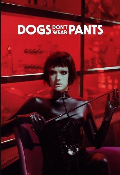 狗不穿裤子海报