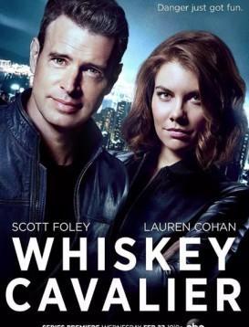 互怼特工 Whiskey Cavalier海报