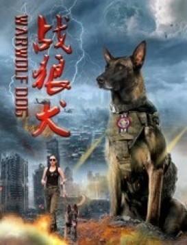 战狼犬海报