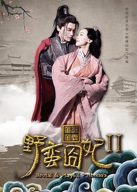 野蛮囧妃2:迷雾重重海报