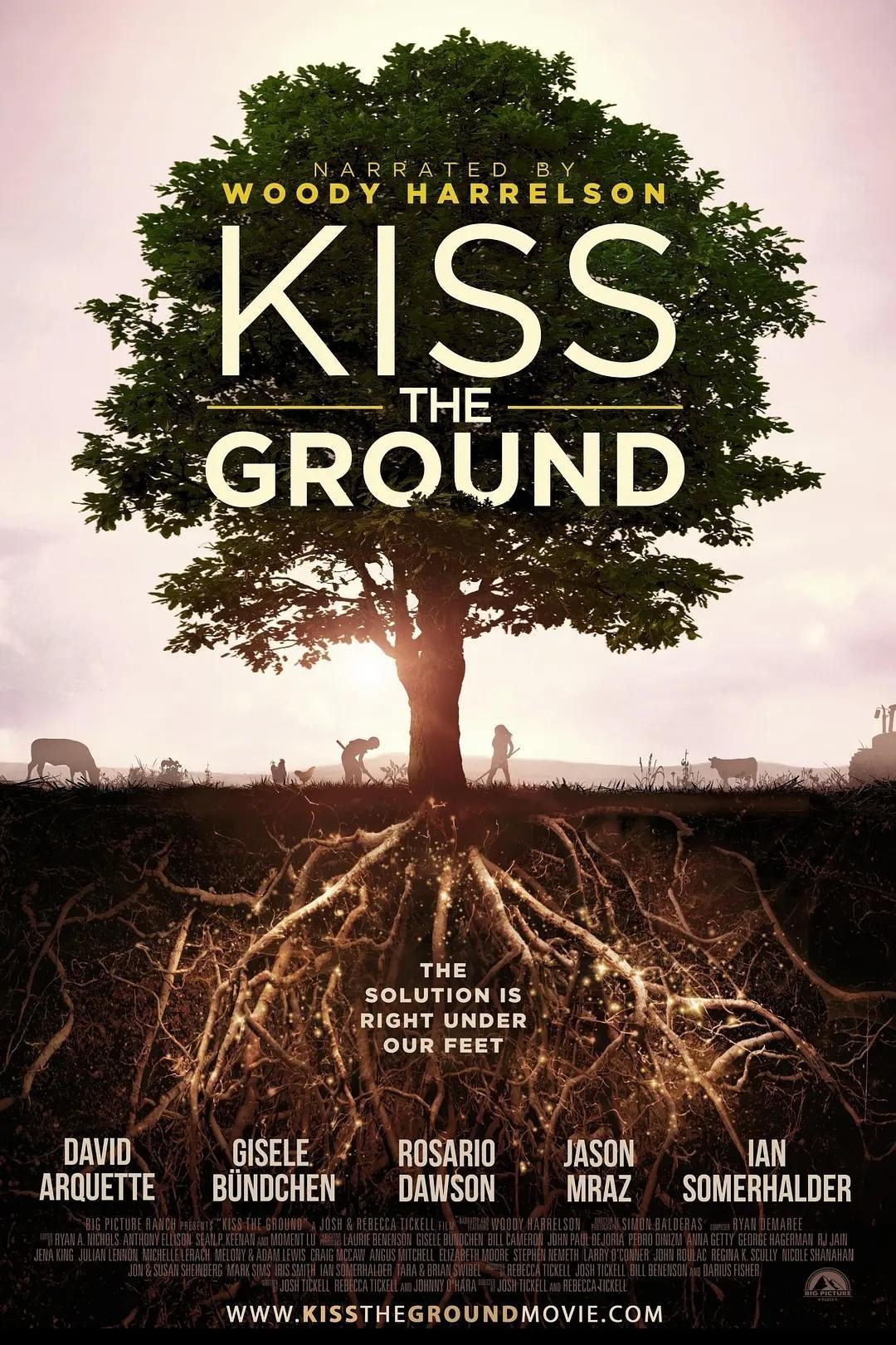 亲吻地面海报