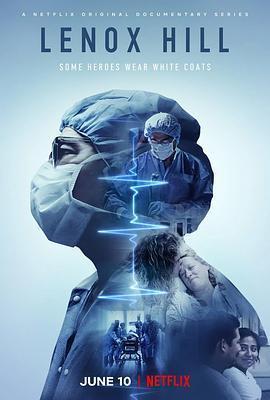 纽约医生日记 第一季海报