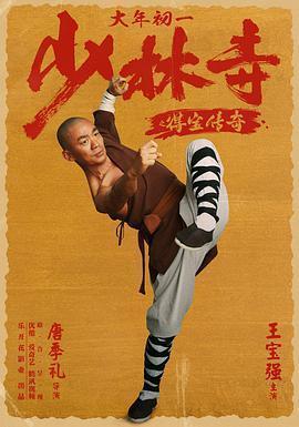 少林寺之得宝传奇海报