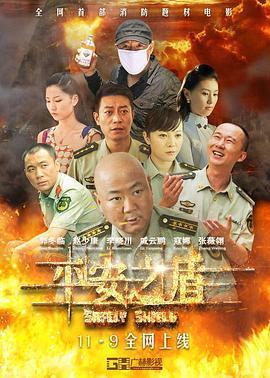 平安之盾 电影海报