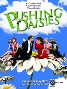 灵指神探 第一季 Pushing Daisies Season 1海报