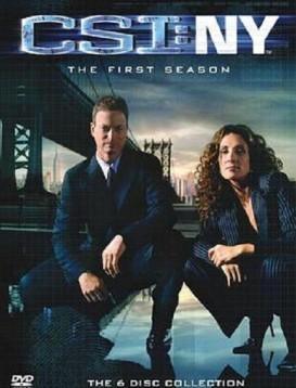 犯罪现场调查:纽约第一季海报