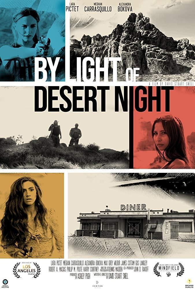 通过沙漠之夜海报