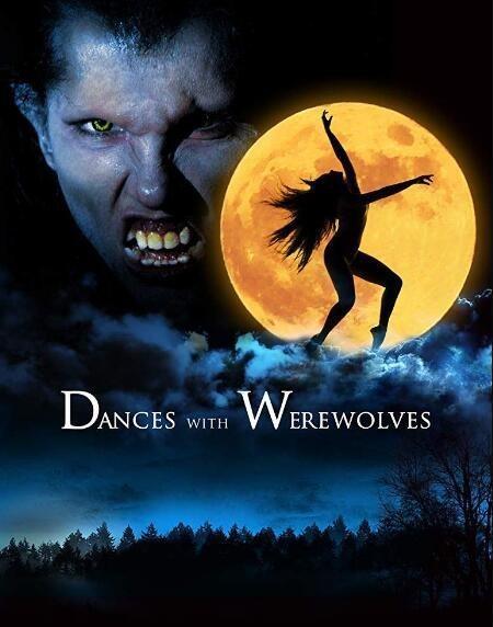 与狼人共舞海报