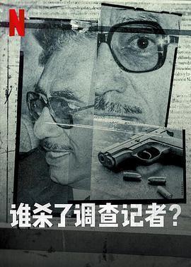谁杀了调查记者海报