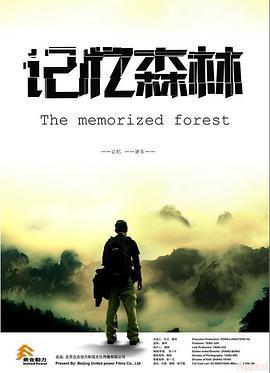记忆森林海报剧照