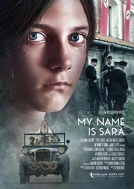 我的名字叫莎拉海报