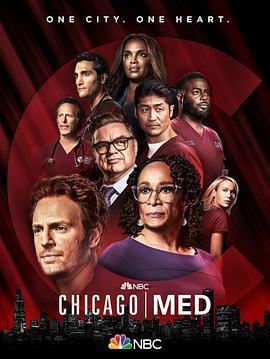 芝加哥急救 第七季海报
