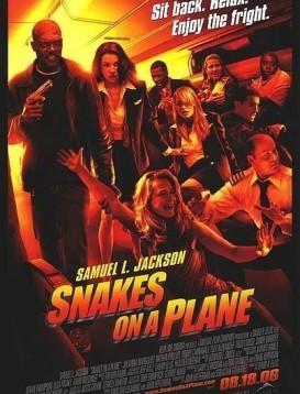 航班蛇患海报