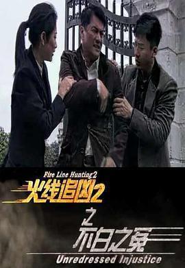 火线追凶2之不白之冤海报