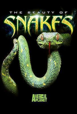 蛇之惊艳奇观海报