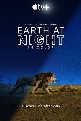 夜色中的地球 第一季海报