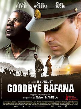 再见巴法纳 电影海报