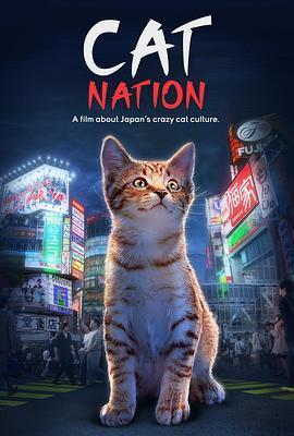 猫咪国度海报