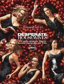 绝望主妇 第二季 Desperate Housewives Season 2海报