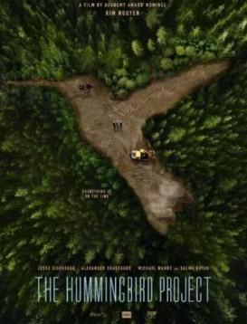 蜂鸟计划海报