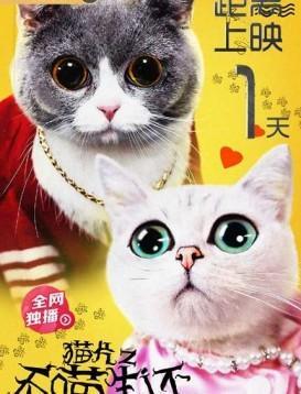 猫片之无喵生还海报