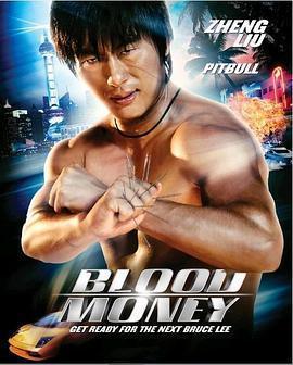 少林杀手:血钱 电影海报
