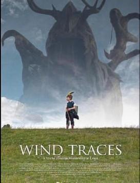 风的痕迹海报