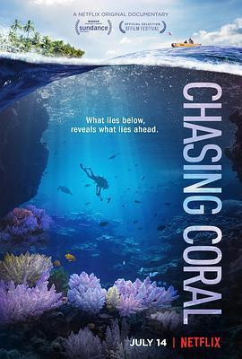 追逐珊瑚海报