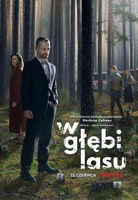 森林谜案 第一季海报
