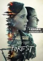 走进希望无限的森林海报