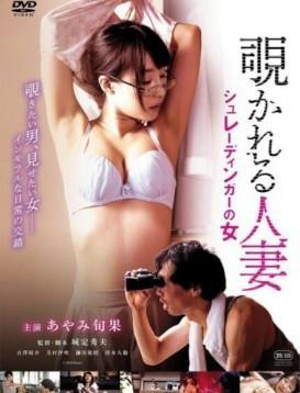 窥情公寓 日本R级电影海报