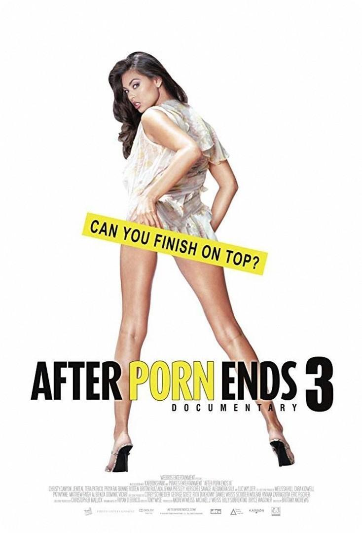 色情之后3海报