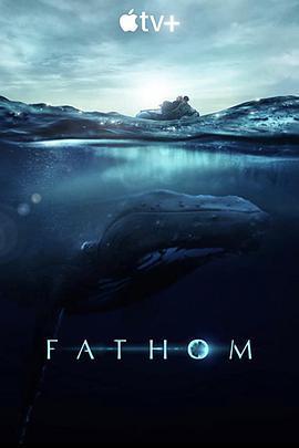 探寻鲸之音/座头鲸揭秘海报