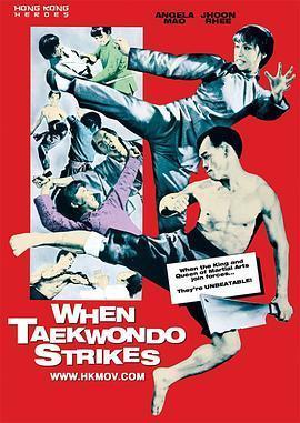 跆拳震九州海报
