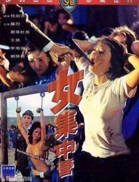 女集中营  香港三级海报