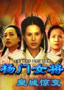 杨门女将之皇城惊变 电影海报