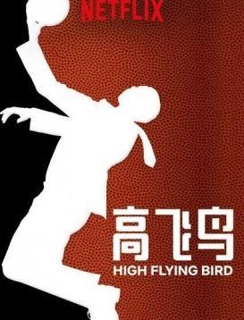 高飞鸟/空中飞鸟海报
