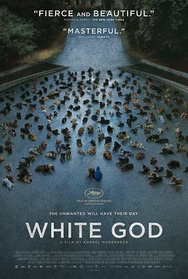 白色上帝 电影海报