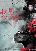他是猫之猫妖诅咒海报