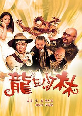 龙在少林 电影海报