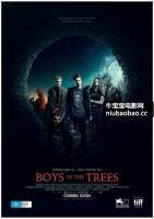树中男孩海报