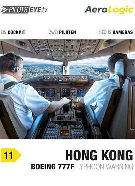 飞行员之眼:香港海报