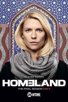 国土安全 第八季海报